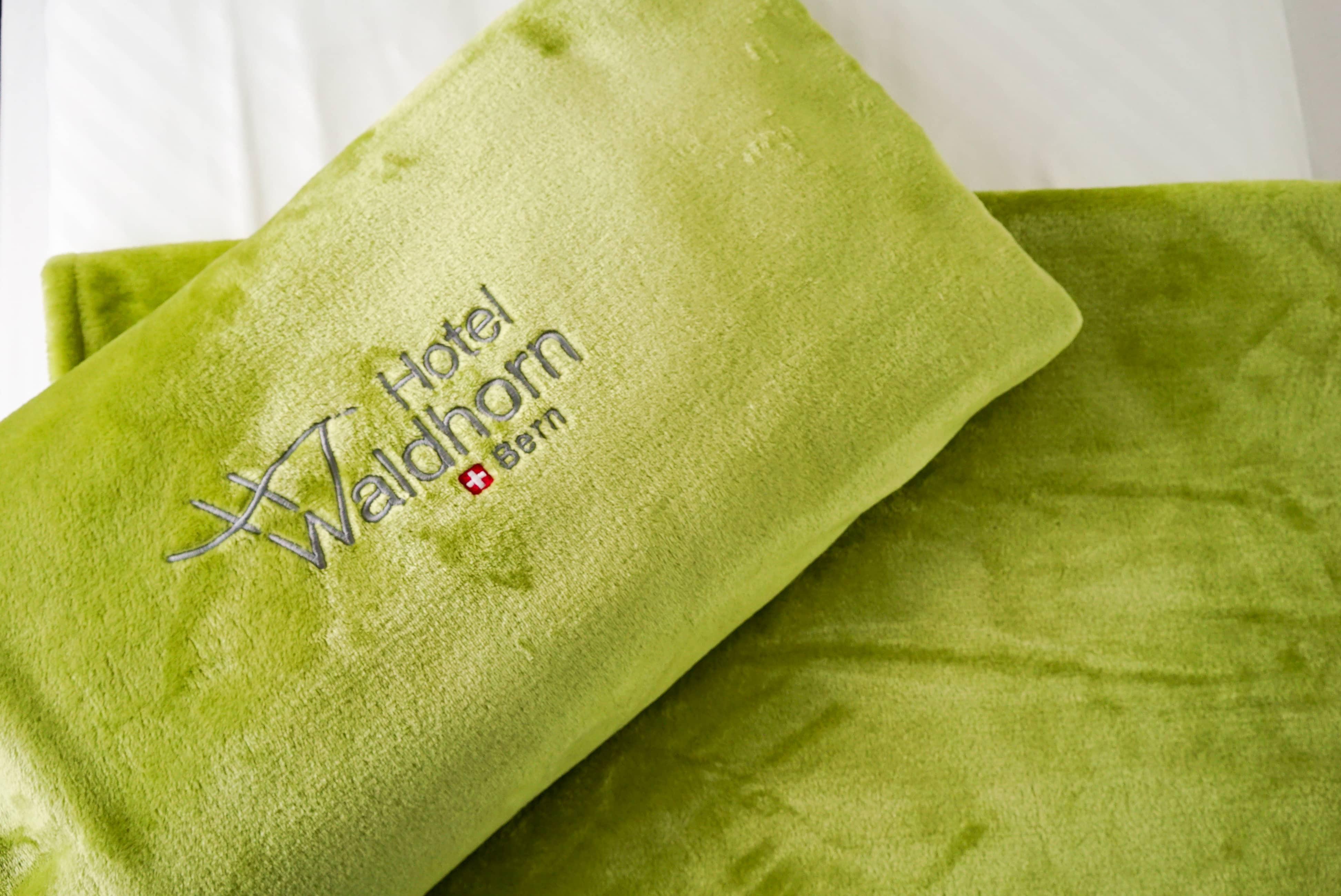 https://www.waldhorn.ch/wp-content/uploads/2016/03/Waldhorn-8.jpg